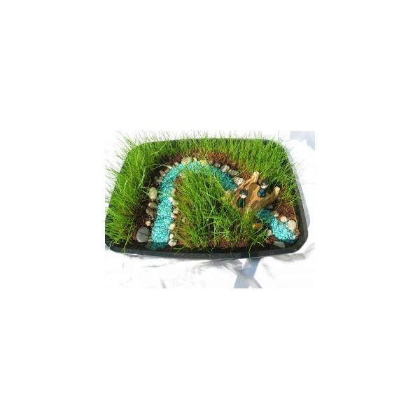 Mini jardin au bord du ruisseau for Au bout du jardin