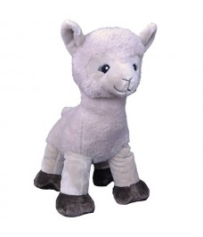 Dolly le Lama Messager